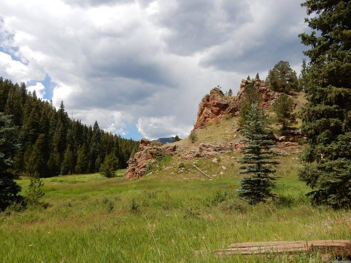 Staunton State Park, Conifer, Colorado