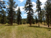 Staunton State Park, Conifer, Colorado