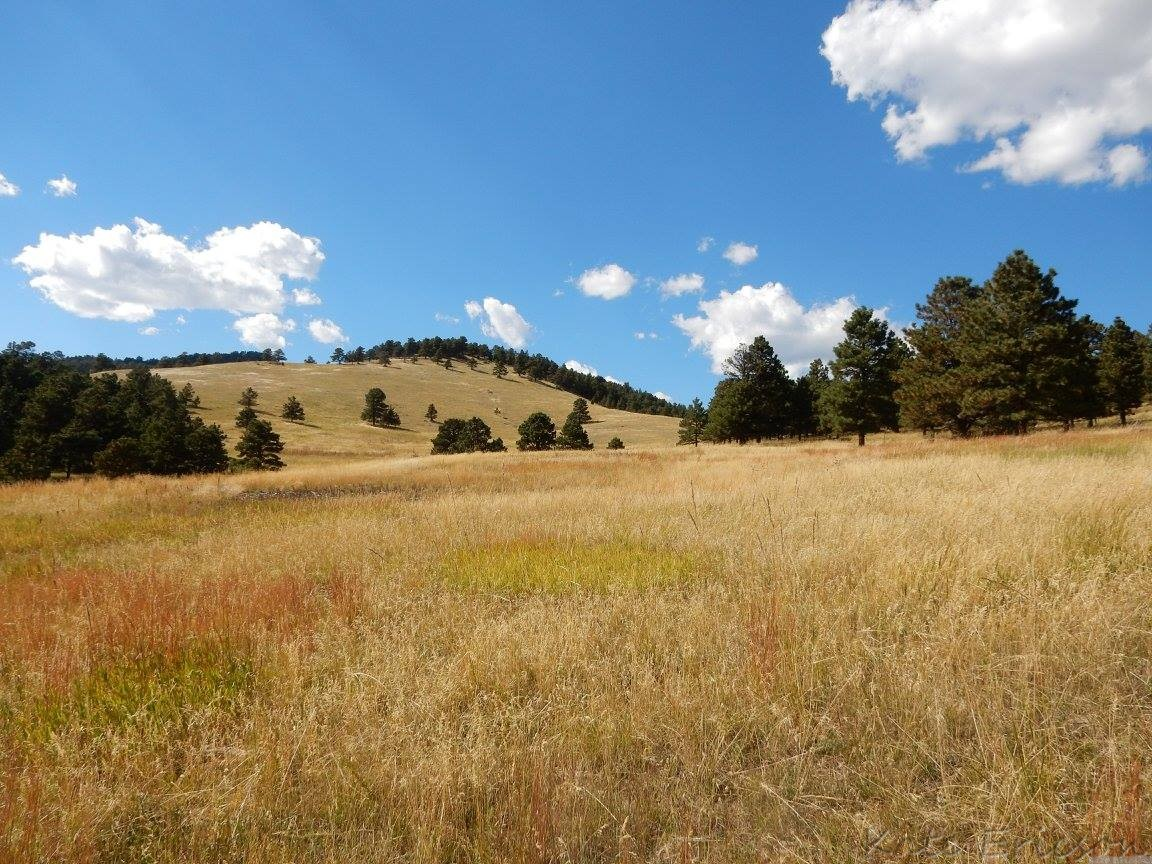 White Ranch Park, Golden, Colorado