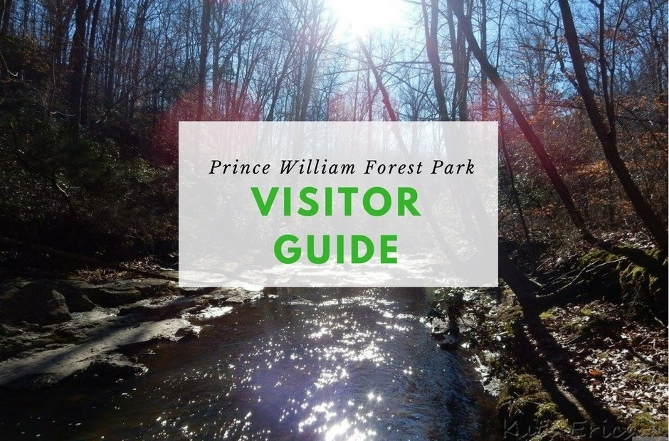 Prince William Forest Park Visitor Guide