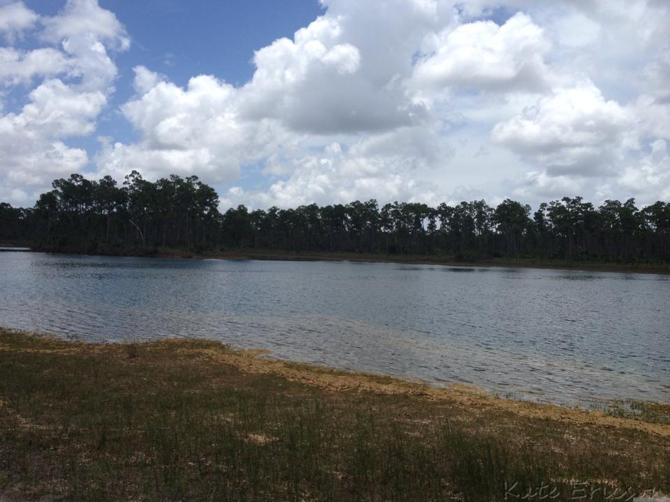 Everglades National Park Visitor Guide