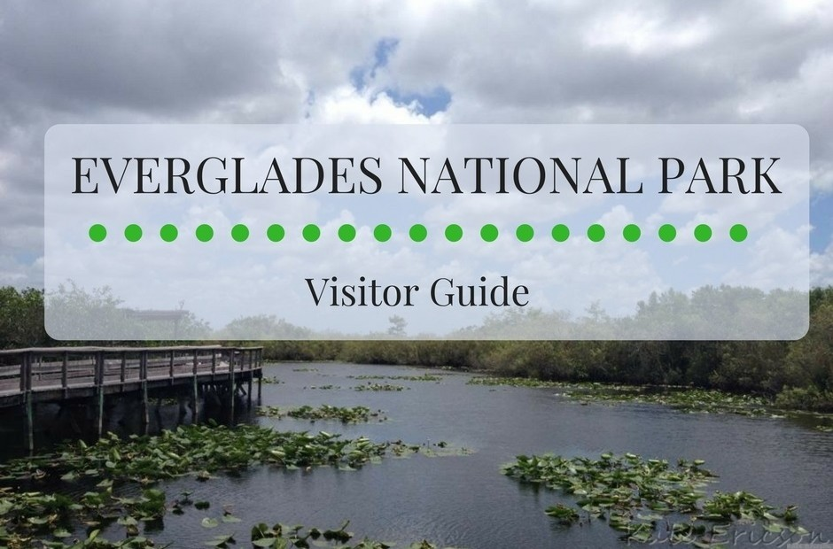 Everglades National Park Visitor Guide